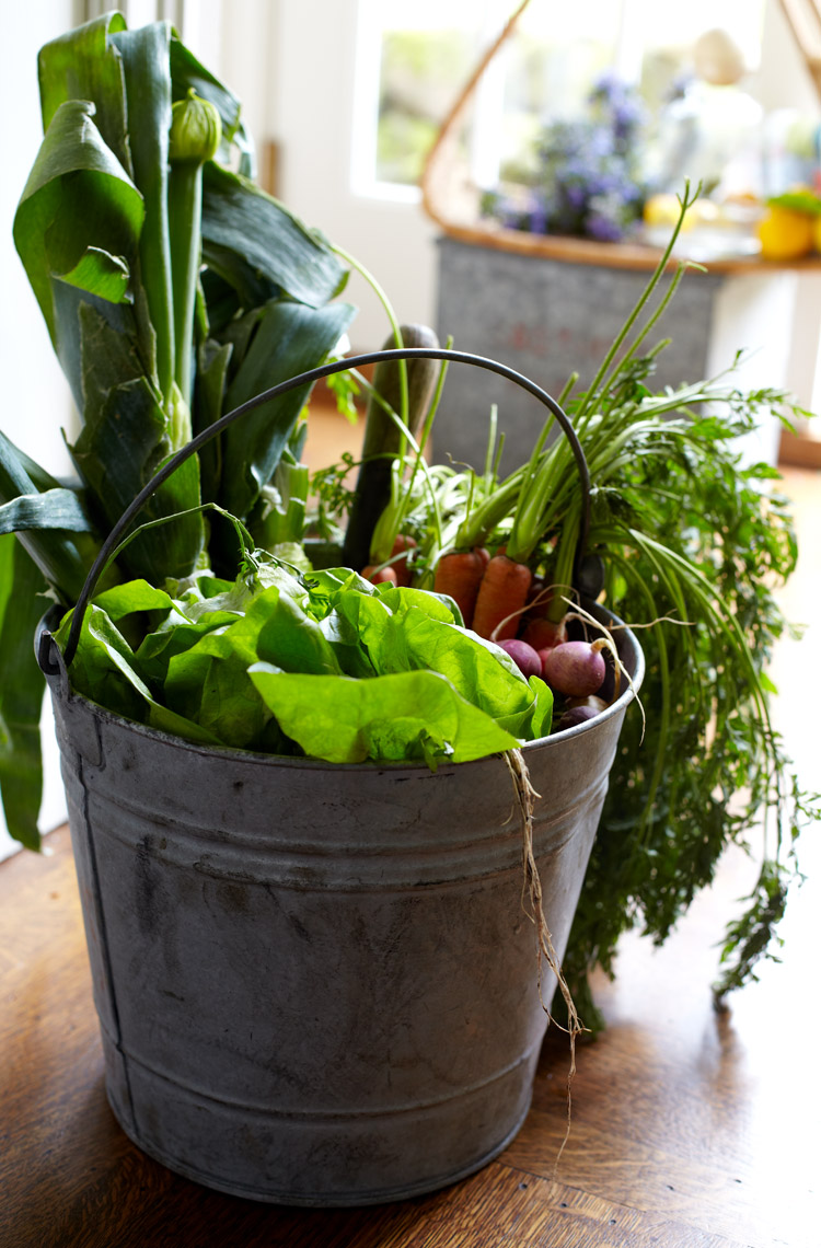 Fresh-Picked-Veggies-in-Pail